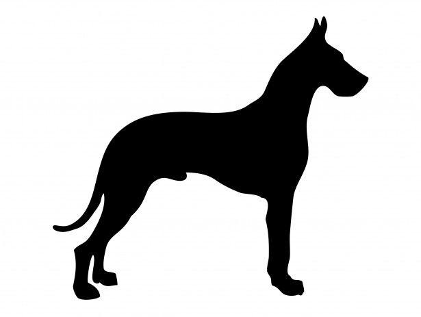 Dog Silhouette Great Dane Tusch