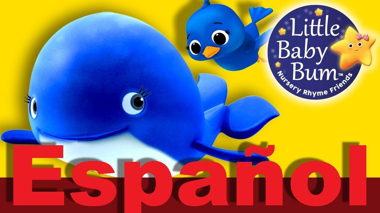 La ballena azul | Canciones infantiles | LittleBabyBum | ballenas ...
