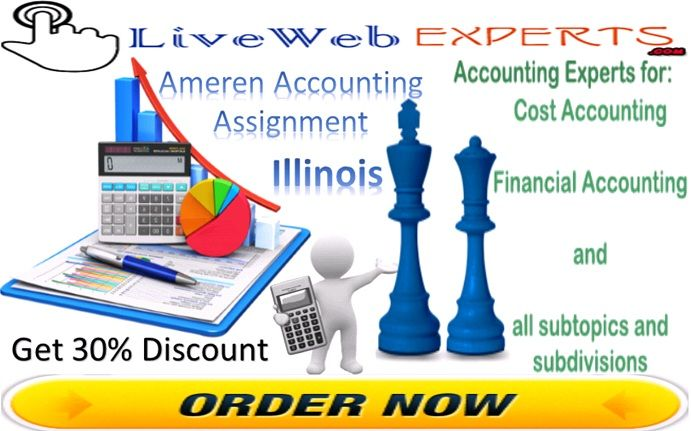 Ameren accounting assignment