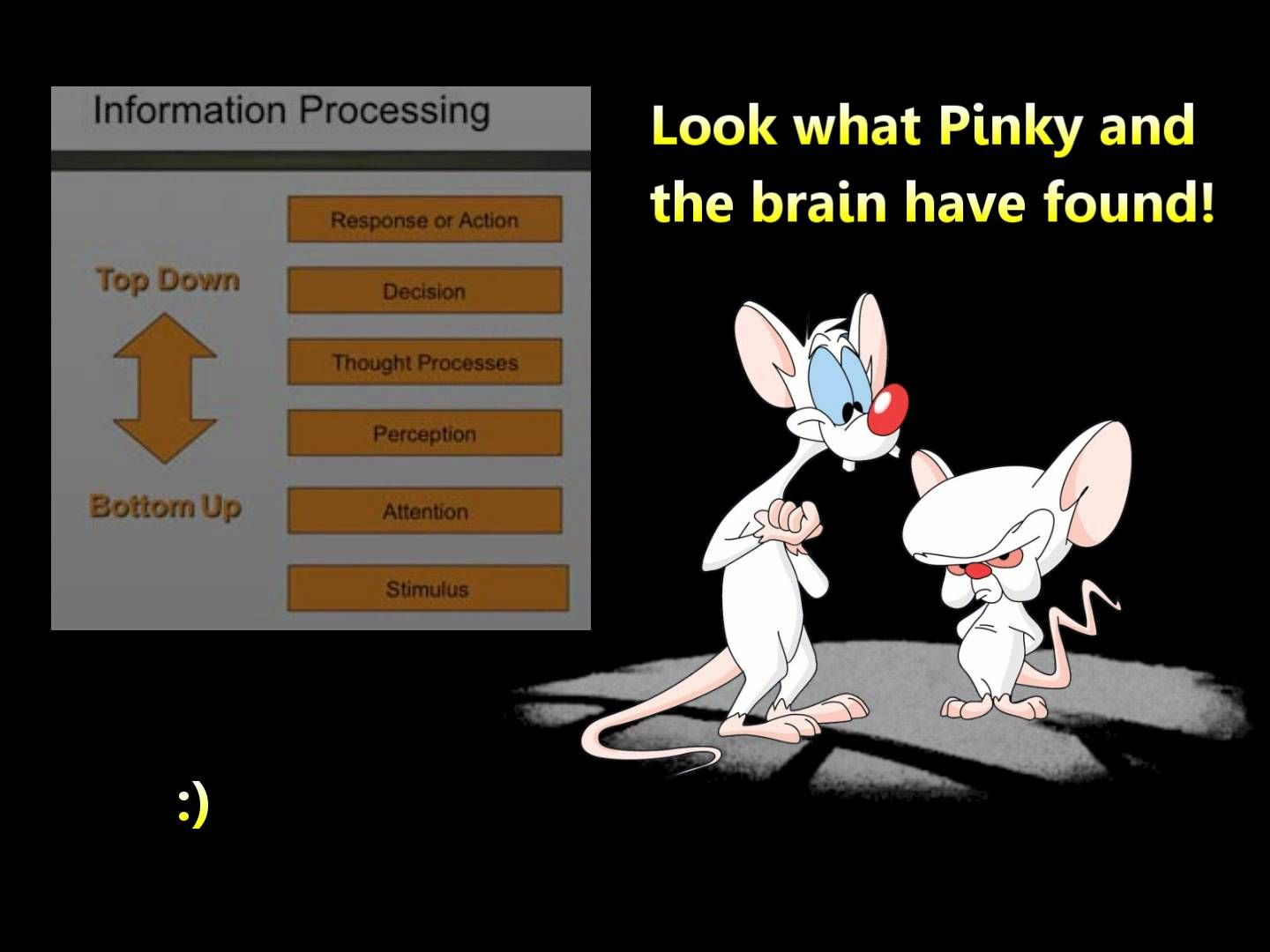 Pinky The Brain Quotes