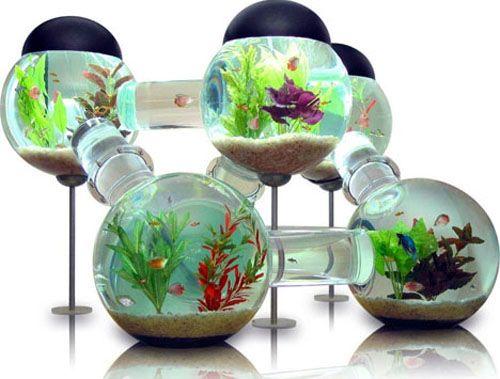 Pin By Lori Cronk On Megan S Board Cool Fish Tanks Fish Tank Design Modern Fish Tank