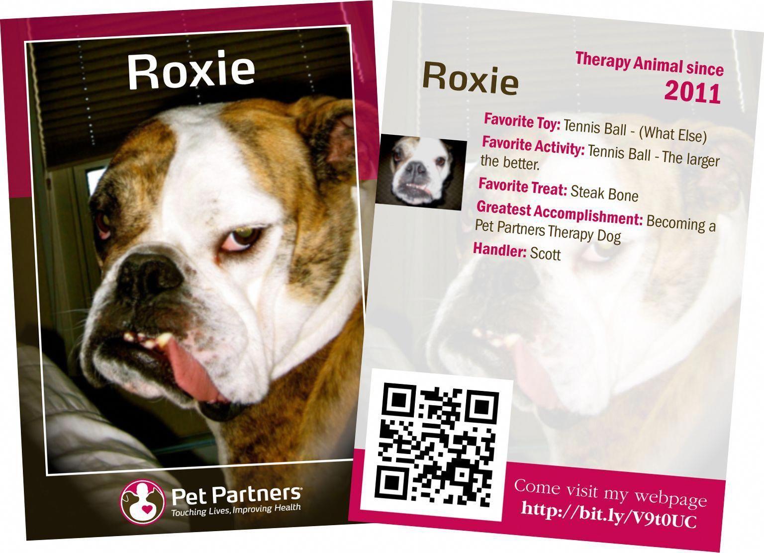 Dog Training Business Dogtrainingbusiness Therapy Dog Training