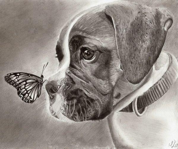 10 Lovely Dog Drawings For Inspiration Dog Drawing Dog Art Dog