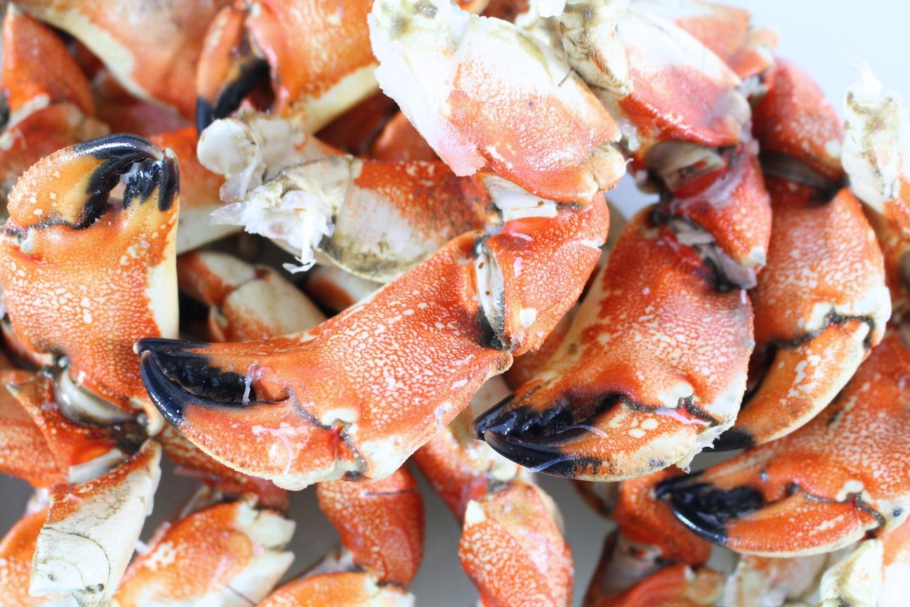 Jonah Stone Crab Claws & Arms Stone crab claws, King