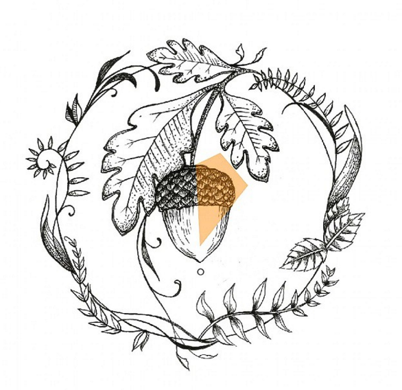 Acorn design …   Pinteres…