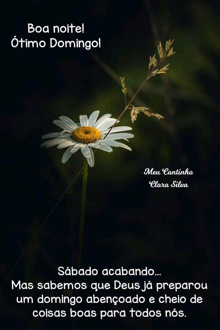 Pin De Maria Ponciano Em Bom Domingo Mensagem De Boa Noite