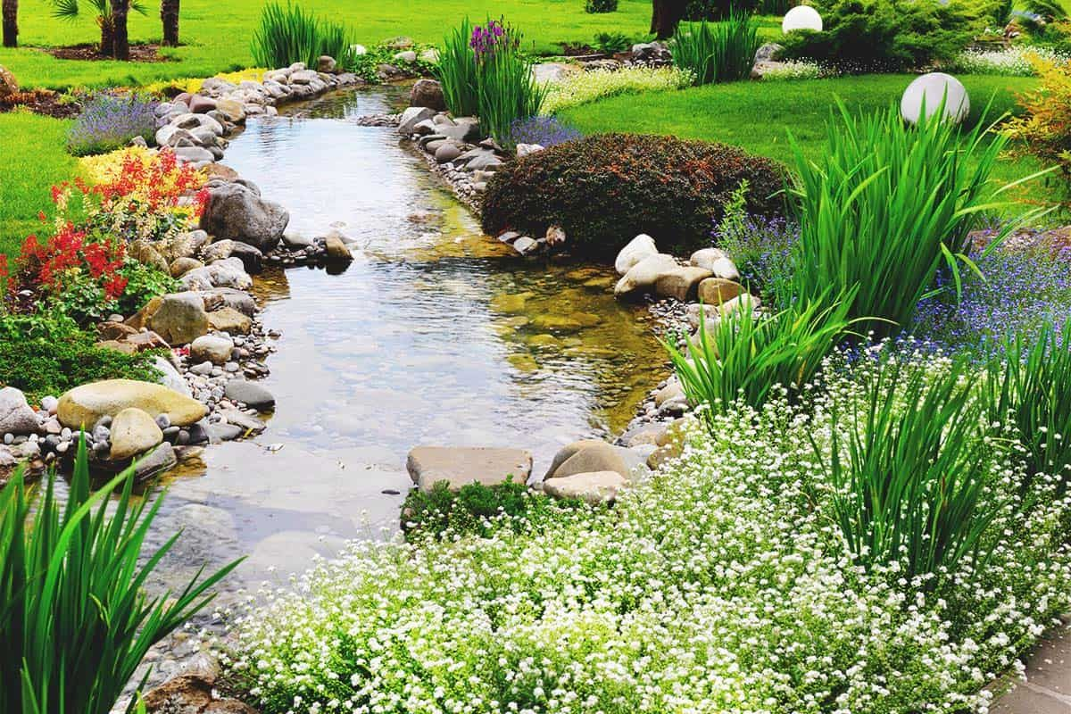 How to Build a DIY Water Garden in Your Yard | Water ...