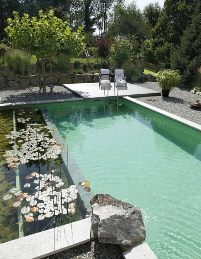 Piscine rectangulaire avec bassin végétal Private garden - terrasse bois avec bassin