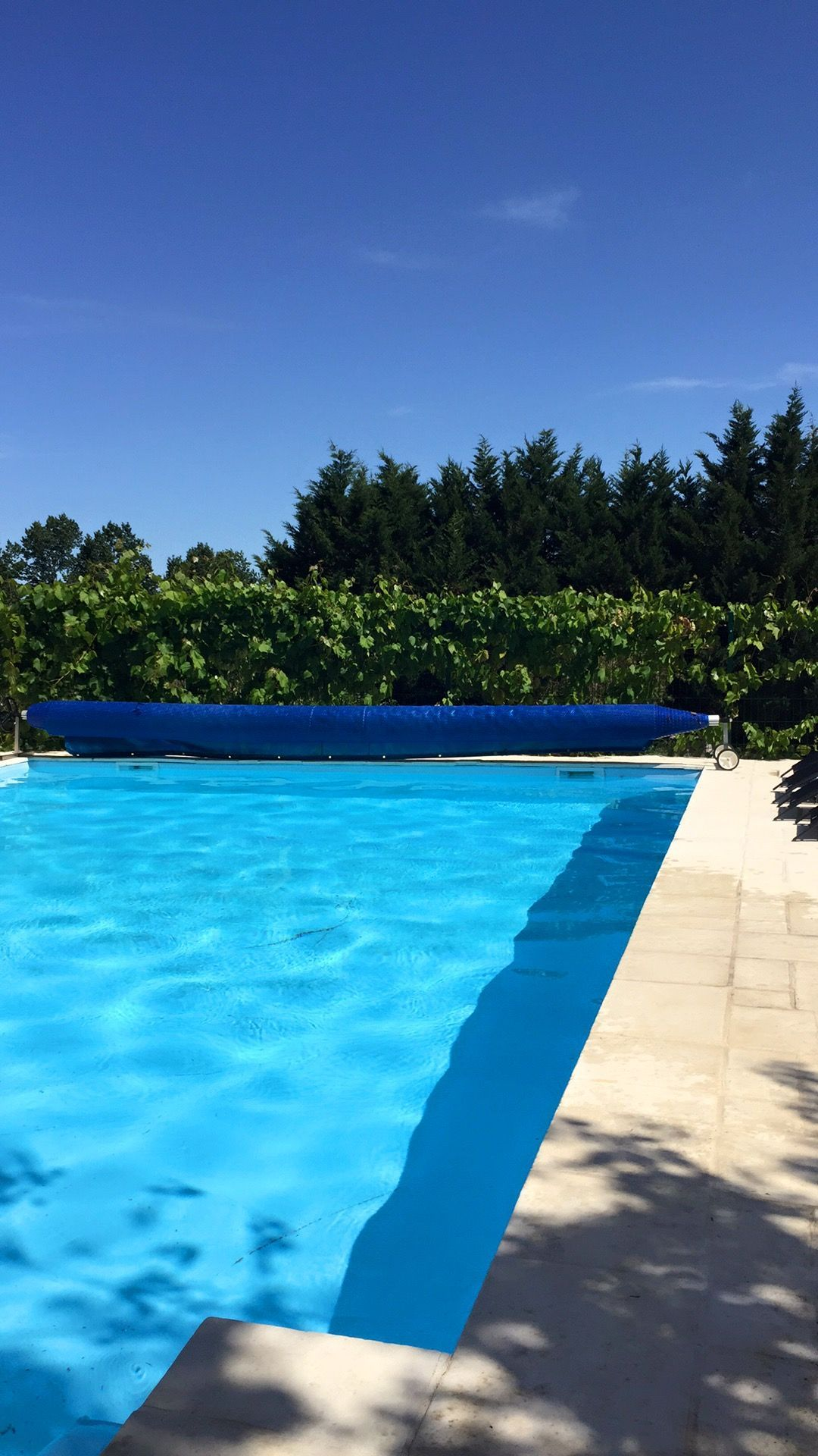 French Swimming Pool Design New Pool For 2017 9m X 6m House Available For Self Catering Holidays Events And Wedd Swimming Pool Designs Swimming Pools Pool