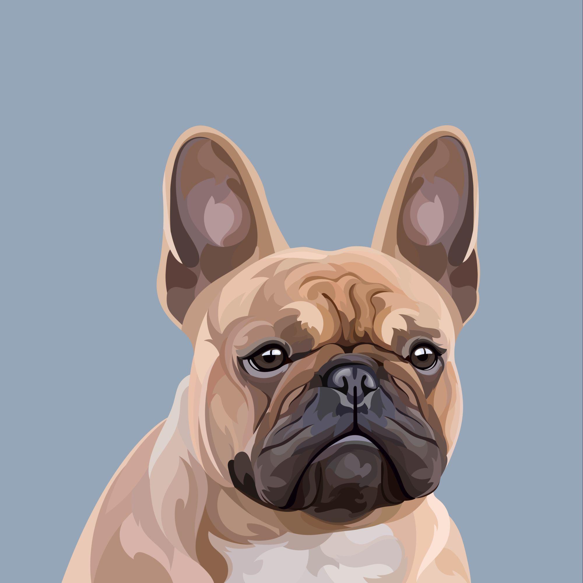 Custom Digital Pet Portrait Detailed Pet Illustration | Etsy | Pet portraits,  Custom pet portraits, Cat portraits