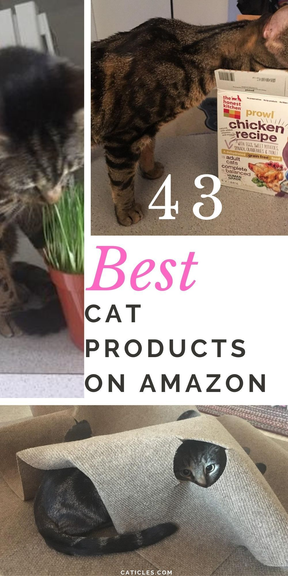 43 Best Cat Products On Amazon 2020 Must Have Guide In 2020 Cool Cats Kitten Care Pet Grooming