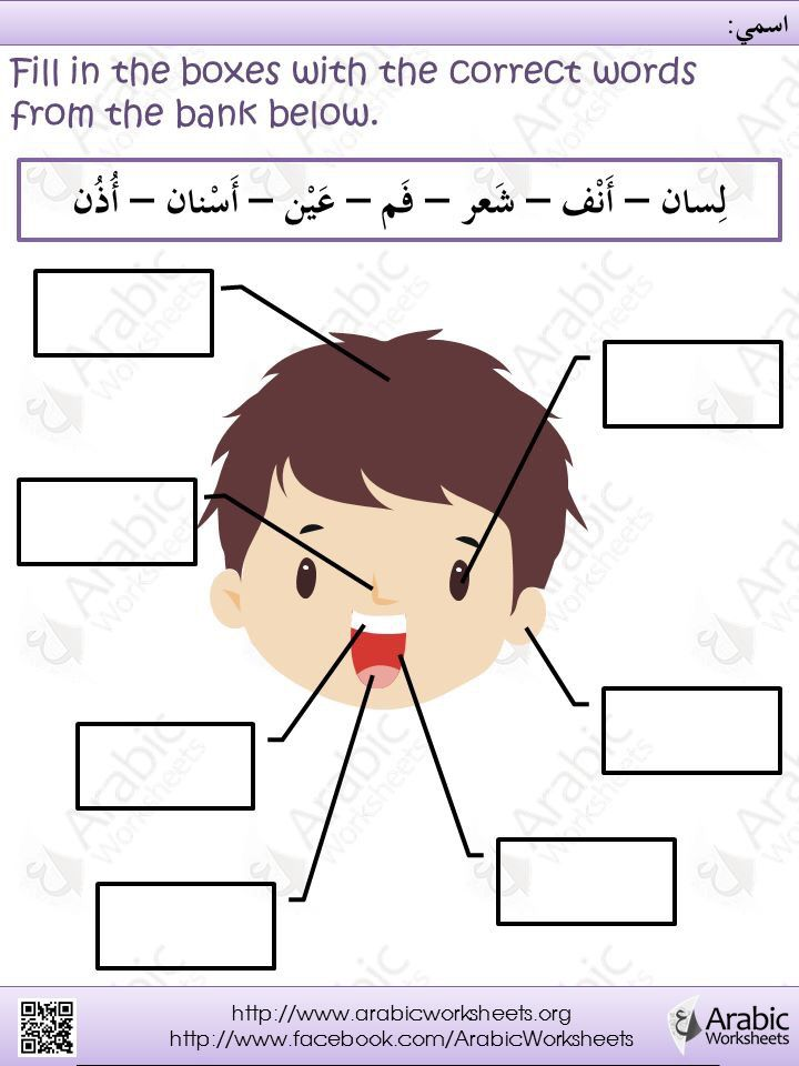 Arabic worksheet | Arapça - Arabic- العربية | Pinterest ...