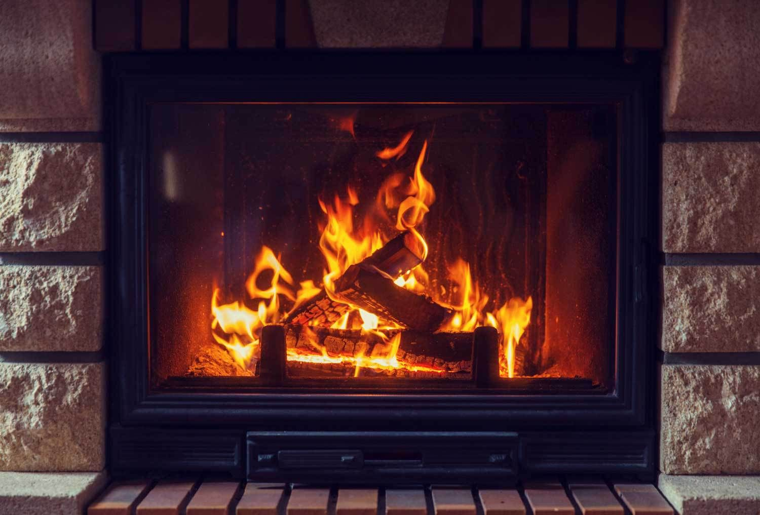 get ready to roar gas fireplace and magazines