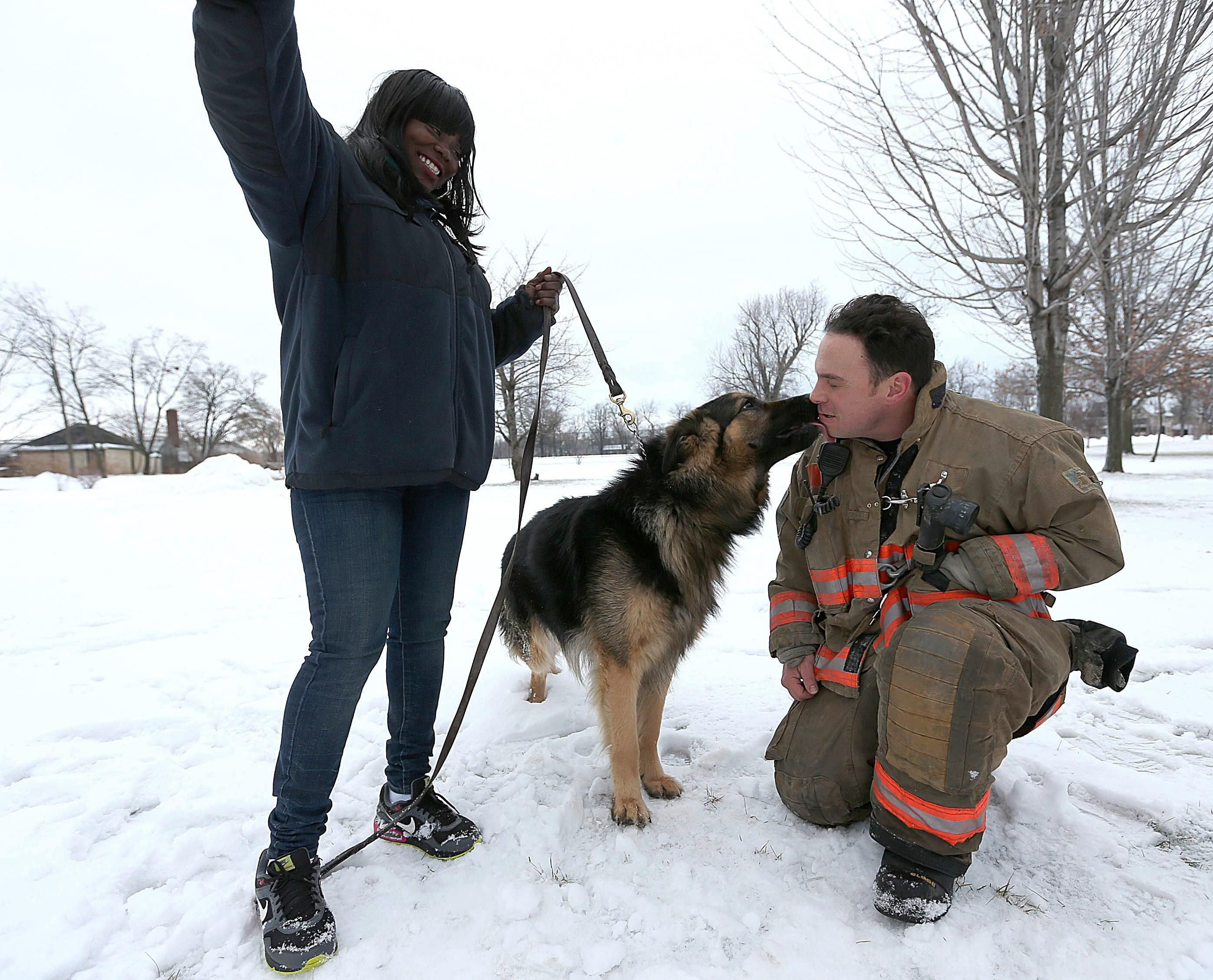 A German Shepherd Is Back On Solid Ground After Being Rescued From