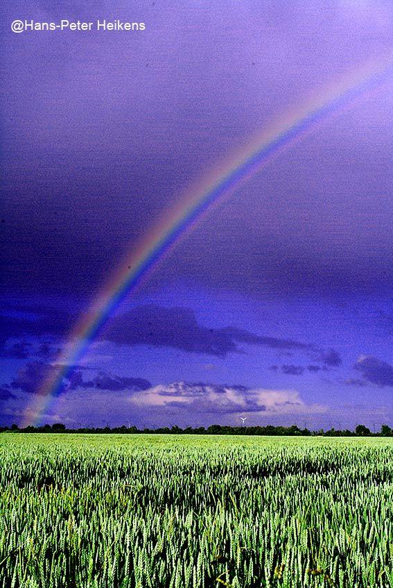 Regenbogen in Ostfriesland