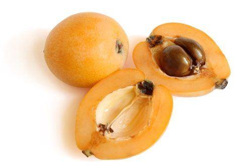 Loquat/Japanese Plum Tree Japanese plum tree, Fruit