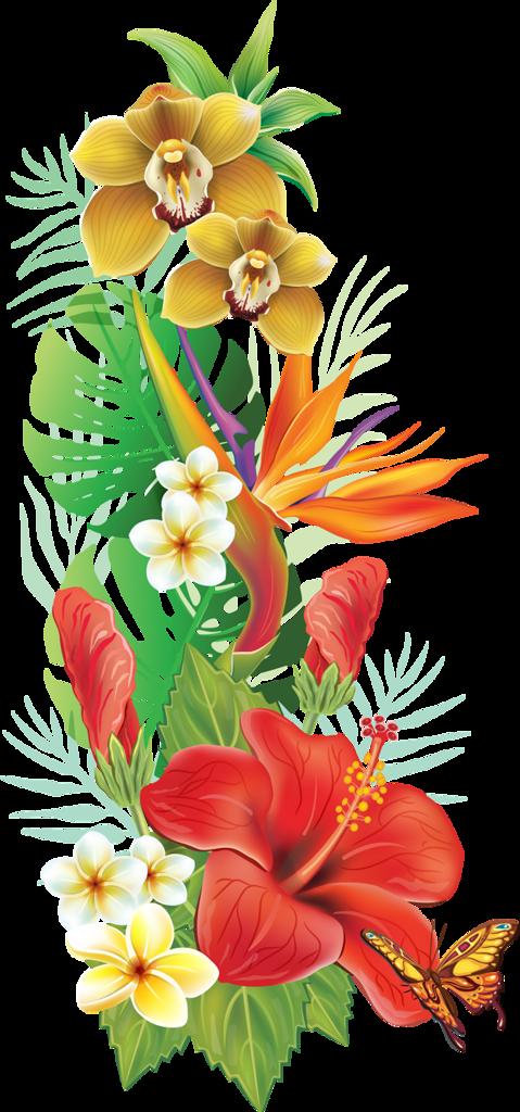 Tropicheskie Clip Art Tropical Cvety Tropicheskie Tropical Flower Tattoos Flower Painting Hawaiian Flower Tattoos