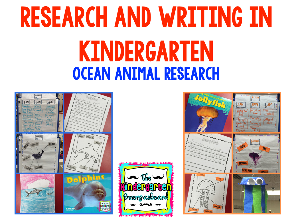 Ocean Animals Research And Writing