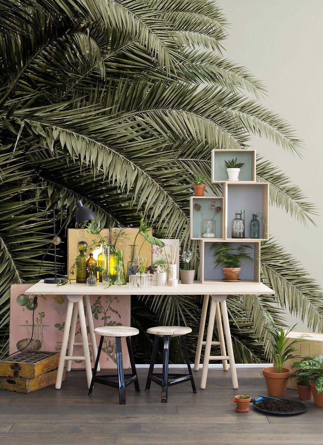 Kinderzimmer wanddekor leaf love  tapeten und waende  pinterest  palm springs interiors