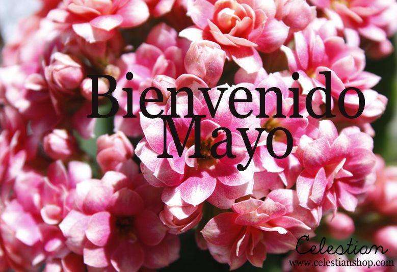 Hoy damos la bienvenida al mes de las flores, ¡Hola Mayo! #mayo #buenosdias #pinterest