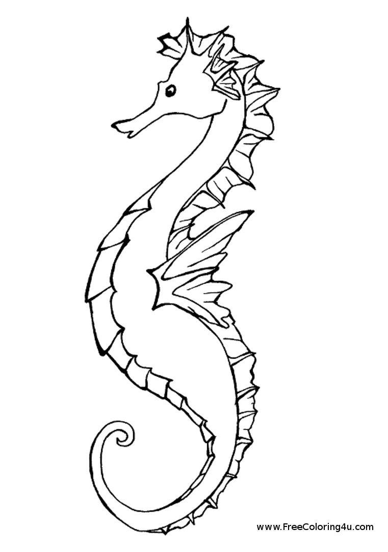 Seahorse coloring page - coloring book | Draw It | Pinterest ...