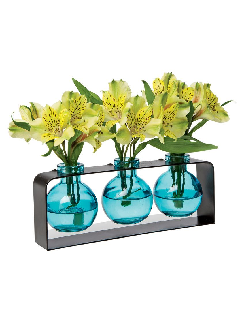 Trio of bud vases pintrest shopping pinterest bud vase trio highlights the beauty of individual blooms reviewsmspy