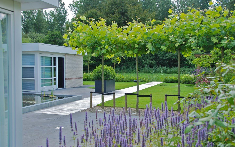 Beste afbeeldingen van landelijke tuin beautiful gardens