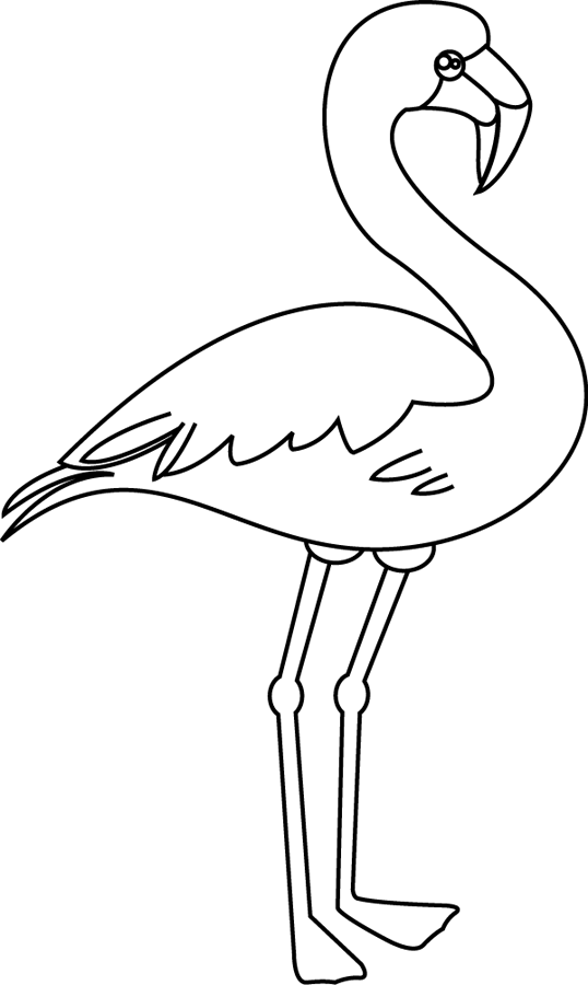 Flamant Rose Flamant Rose Dessin Flament Rose Deco Et