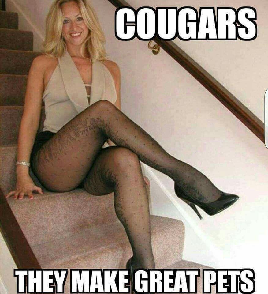 613b7c5d69a61b0952ccb5c745d35656 pin by david on cougars lol pinterest lush, humor and nice