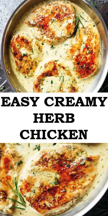 Easy Creamy Herb Chicken Herb Chicken Recipes Baked Chicken Recipes Healthy Healthy Chicken Recipes Easy