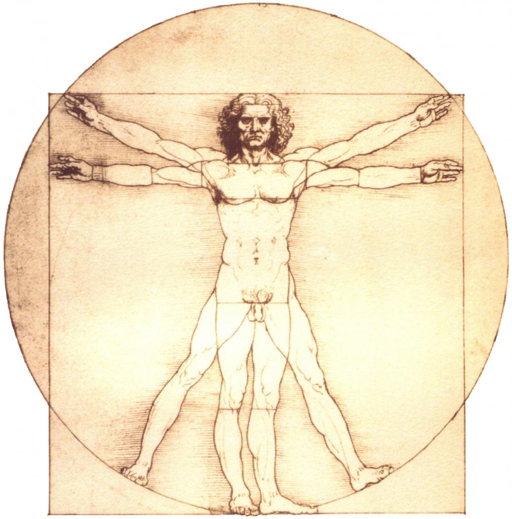 Vitruvian Man Konsthistoria Psykedeliskt Illustration