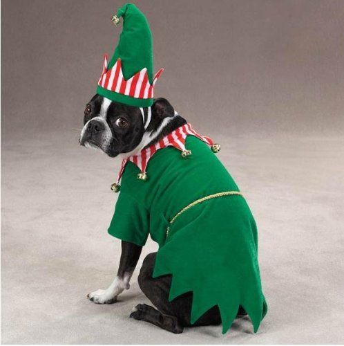 Dog Costume Santa Elf Pet Christmas Holiday Costume XSmall XS -- Want to know more click on the image. | Dogs Costumes | Pinterest | Elf pets ... & Dog Costume Santa Elf Pet Christmas Holiday Costume XSmall XS ...