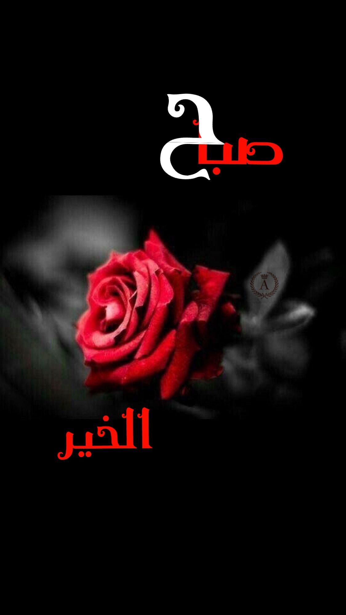 صباح الخير Good Morning Arabic Good Evening Wishes Good Morning Greetings