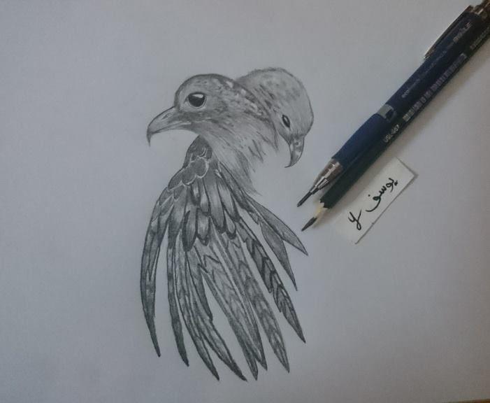 رسم طيور Art Humanoid Sketch Animals