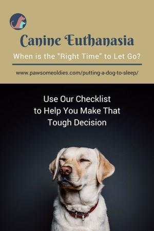 Putting A Dog To Sleep Putting Dog To Sleep Dogs Dog Loss Quotes