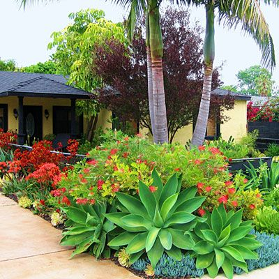 front lawn ideas southern landscaping
