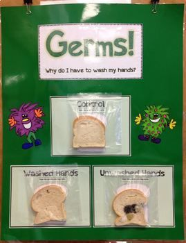 Germs Why Do I Have To Wash My Hands Fun Experiment To Do At