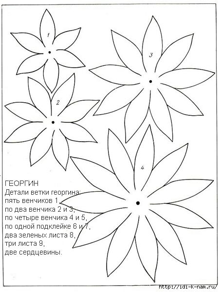 Dahlia Pattern Continued 2