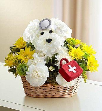 Doggie Howser M D Get Well Flowers Fresh Flowers Online Flower Gift