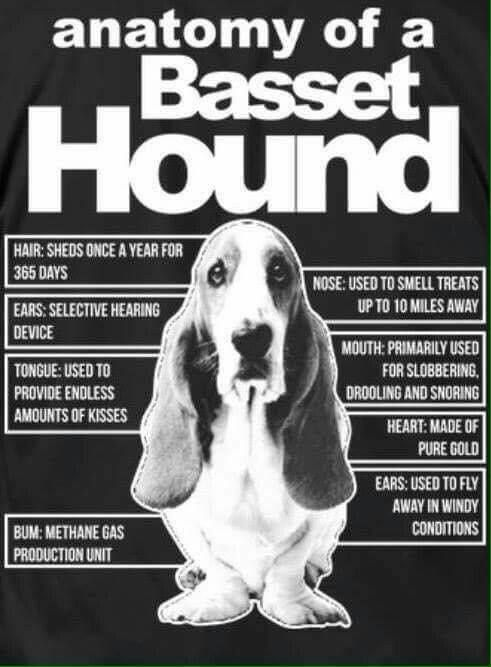 I Love Heart Basset Hounds Kids T-Shirt