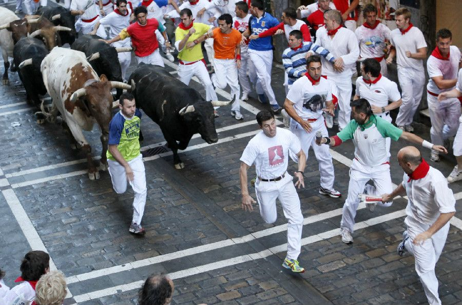 All About the Fiesta - Running of the bulls 2014