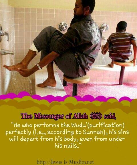 #Wuduu0027 #purification #Salah #Prayer #Hadith #Islam Http:/