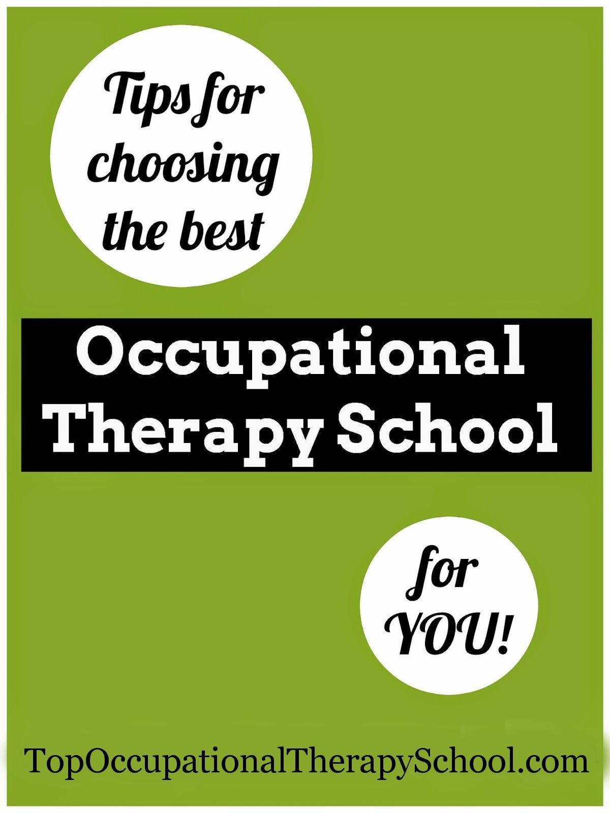 Occupational Therapy Schools  Online Programs Requirements
