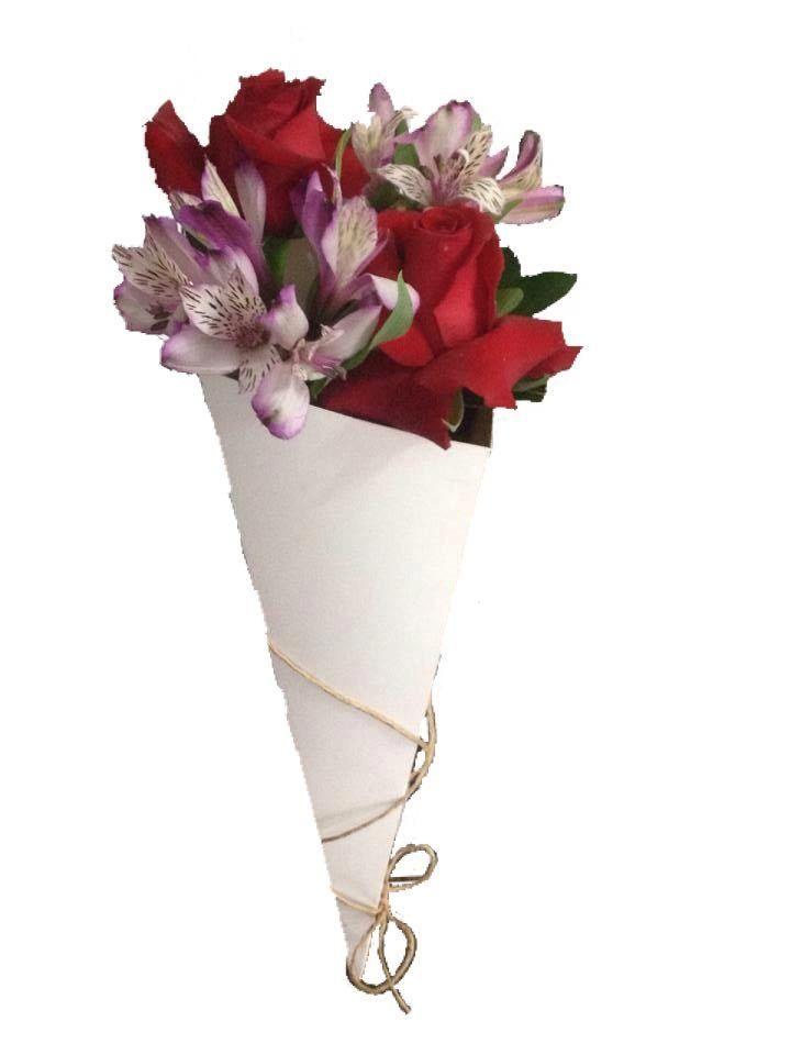 | Floricultura Girassol Flor - Jaraguá do Sul - SC