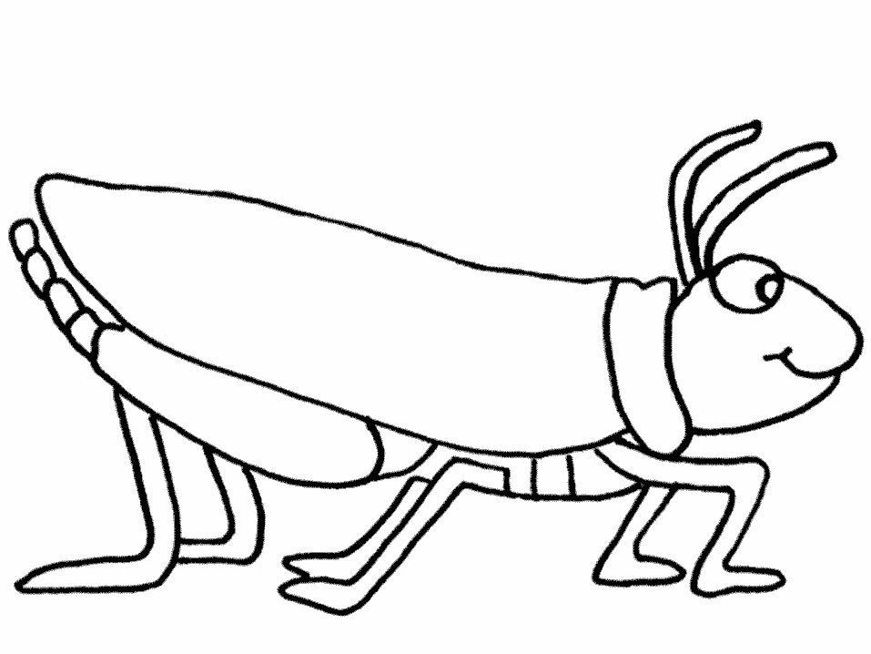 Grasshopper Coloring Pages For Kids Preschool And Kindergarten Coloring Pages For Kids Bug Coloring Pages Coloring Pages