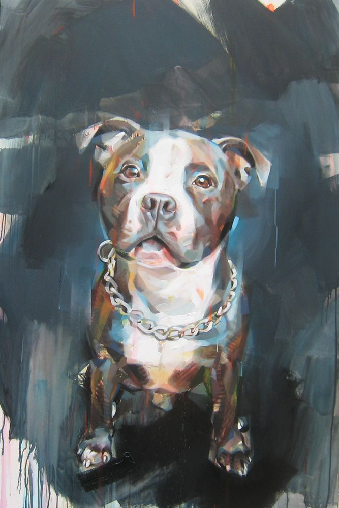 Pascal Vilcollet Tiere Malen Hunde Gemalde Tierkunst