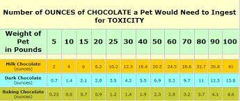 Chocolate Toxicity Chart Pet 5 Chocolate Fur Babies