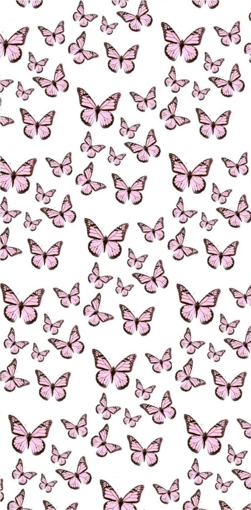 Pink Butterflies In 2020 Aesthetic Iphone Wallpaper Butterfly Wallpaper Iphone Pretty Wallpaper Iphone