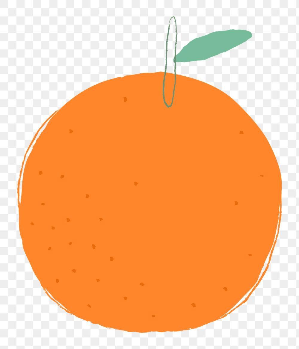 Png Pastel Hand Drawn Orange Fruit Clipart Premium Image By Rawpixel Com Marinemynt Fruit Clipart Clip Art Orange Fruit