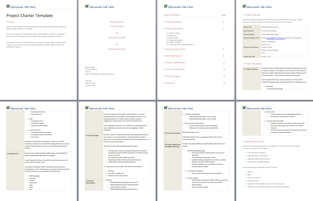 Project Charter Template An 8page project charter